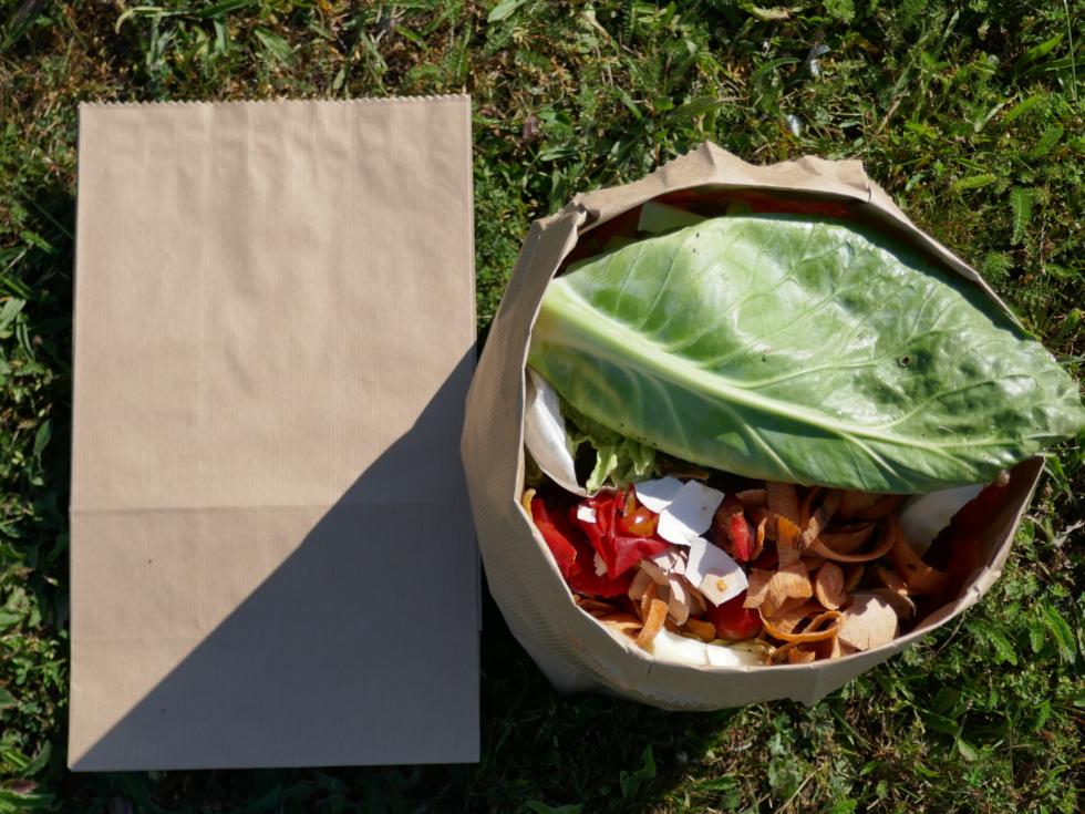 sac en papier - bio déchets
