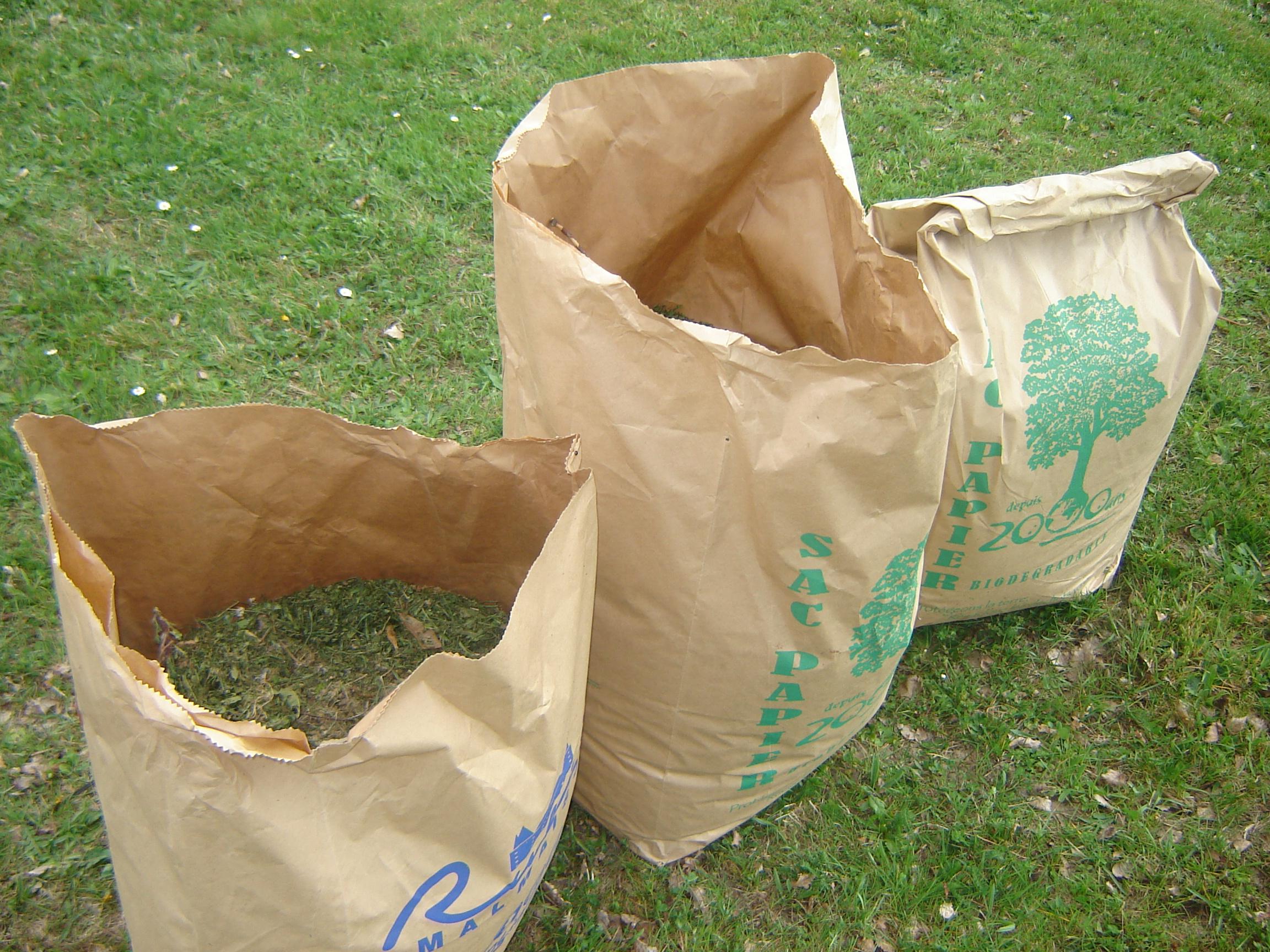 Sac en papier avec fond renforcé pour collecte des déchets végétaux