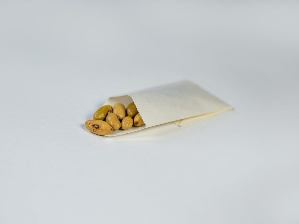Sac en papier plat pour recherche agronomique