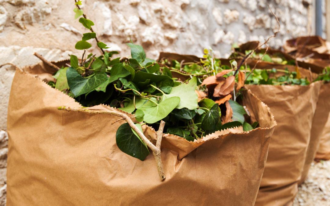 Déchets verts : Comment se déroule la collecte dans les villes ?