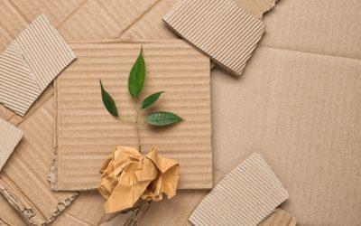 Le sac en papier, l'emballage papier recyclable